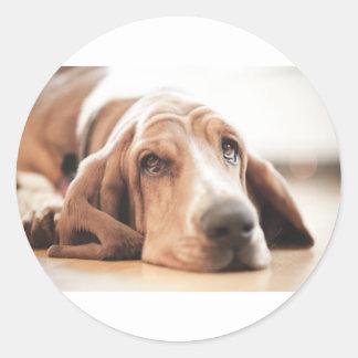 Bassett Hound Puppy Dog Classic Round Sticker
