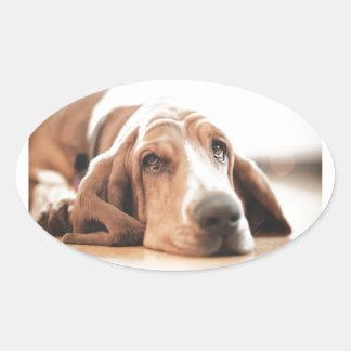 Bassett Hound Puppy Dog Oval Sticker