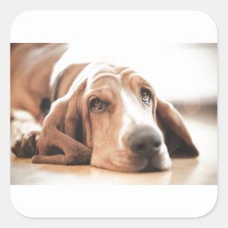 Bassett Hound Puppy Dog Square Sticker