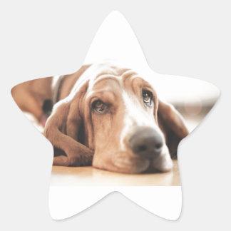 Bassett Hound Puppy Dog Star Sticker
