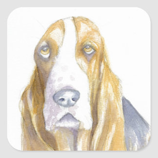Bassett hound square sticker