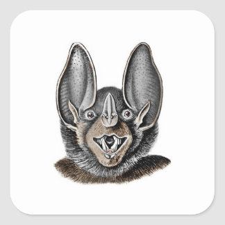 Bat with Big Ears Square Sticker
