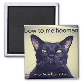 Batcat: Bow to me hooman Magnet