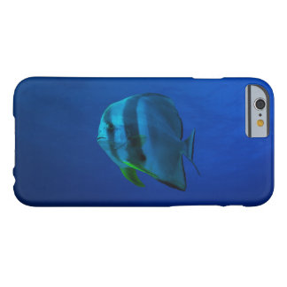 Batfish on the Great Barrier Reef Barely There iPhone 6 Case