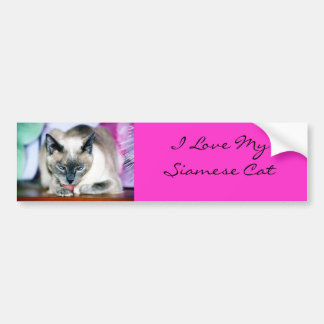 Bath 4 Harmony/I Love My Siamese Bumper Sticker
