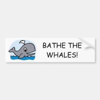 Bathe The Whales Bumper Sticker
