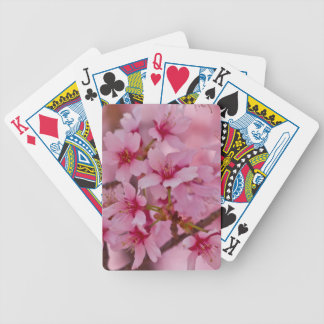 Bathed in Pink Japanese Cherry Blossoms Poker Deck