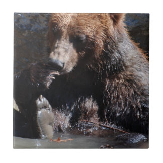 Bathing Bear Tile