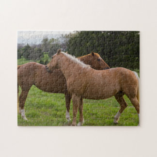 Bathing Beauties Jigsaw Puzzle