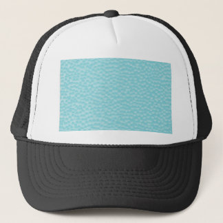 Bathroom Window Glass Trucker Hat