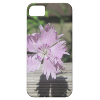 Baths Pink Dianthus on Fence iPhone 5 Case