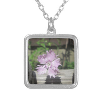 Baths Pink Dianthus on Fence Silver Plated Necklace
