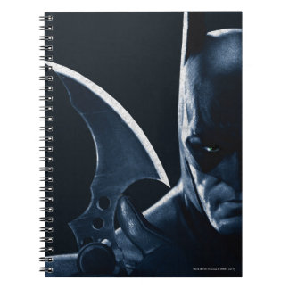 Batman: Arkham Asylum | Batman Closeup Notebook