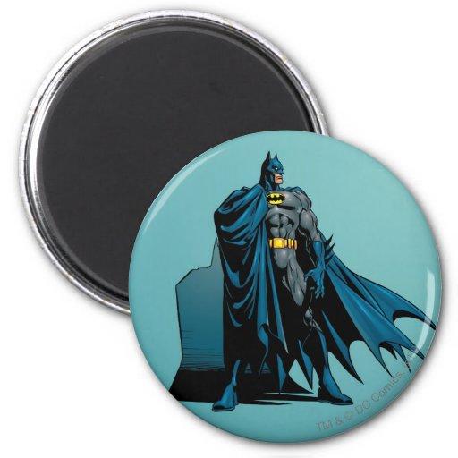 Batman Knight FX - 12B Refrigerator Magnets