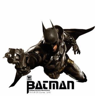 Batman With Batclaw Standing Photo Sculpture