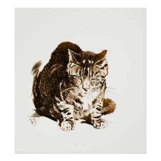 Battleship Cat 1898 Poster