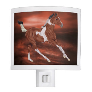 Bay and White Tobiano Paint Horse Foal Night Lights