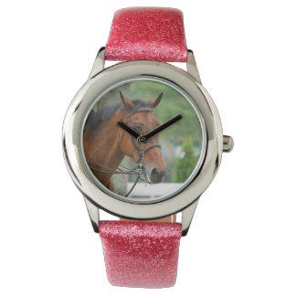Bay Arab Horse Watch