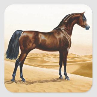 Bay Arabian Stallion Square Sticker