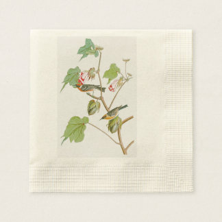 Bay-breasted Warbler John Audubon Birds of America Napkin