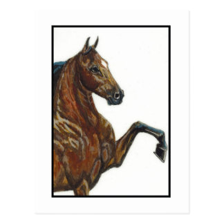Bay Harness Pony 3 Postcard