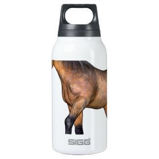 Bay Horse Walking Insulated Water Bottle