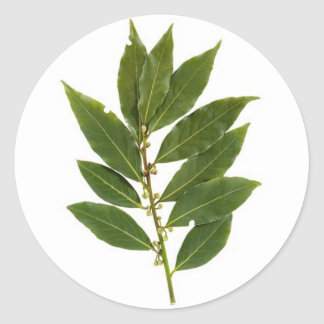 Bay leaves classic round sticker
