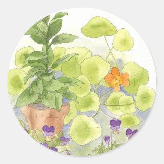 Bay Nasturium Flower Watercolor Herb Art Classic Round Sticker