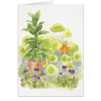 Bay Nasturtium Watercolor Flower Art Note Card