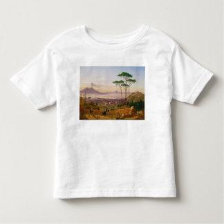 Bay of Naples Toddler T-shirt