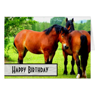 Bay Polish Bred Draft Horses Happy Birthday Card