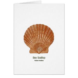 Bay Scallop Shell Card