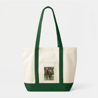 Bay Thoroughbred Horse Canvas Tote Bag