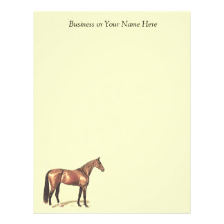 Bay Thoroughbred Horse Personal or Business Paper Custom Letterhead