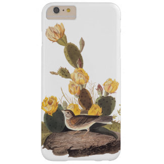 Bay-Winged Bunting Audubon Audubon Bird Barely There iPhone 6 Plus Case