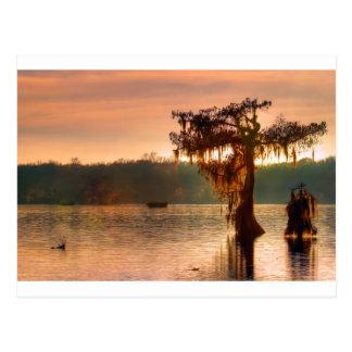 Bayou Sunset 5769 Postcard