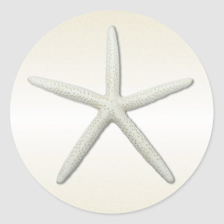 Bayside Single Starfish Champagne Round Classic Round Sticker