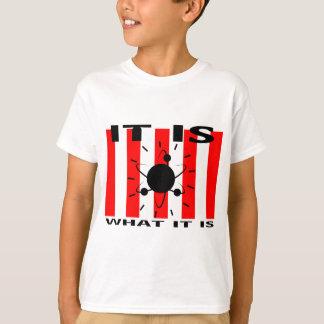 Bazinga Gifts T-Shirt