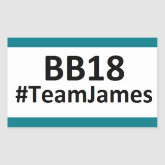 BB18 (Big Brother 18) Team James STICKERS