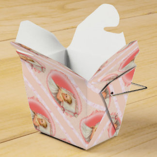 BB BABY NEW BORN Take Out Favor Box