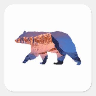 BC Bear photo in Banff Square Sticker