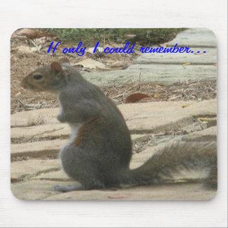 BC-Squirrel Mousepad
