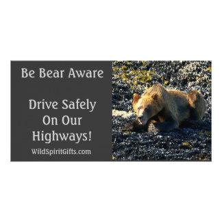 BE BEAR AWARE Photo Cards