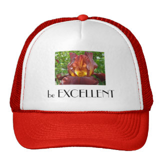 be EXCELLENT hats Iris Flowers Glowing Floral