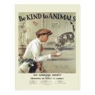Be Kind to Animals USA vintage postcard #2