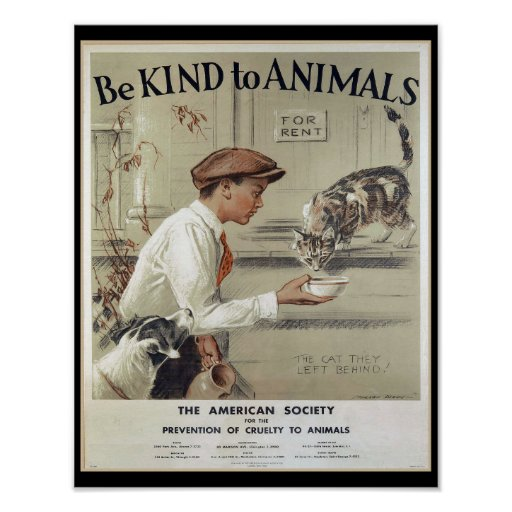 be kind to animals essay It's easy to think that kids will naturally be kind to animals without having to be  taught, but that's not necessarily true.