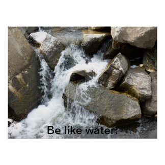 Be Like Water Poster