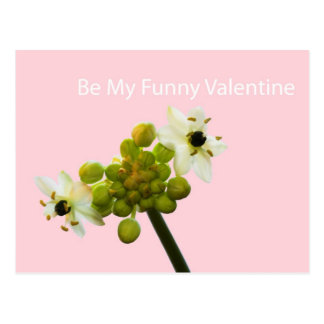 Be My Funny Valentine Post Card