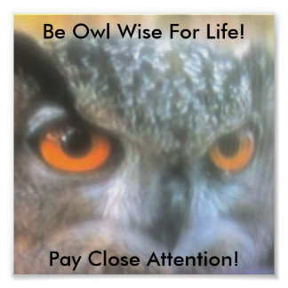 Be Owl Wise For Life!, Pay Clos... Poster