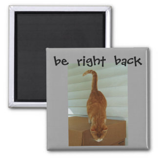 be  right  back magnet, stray1 magnet